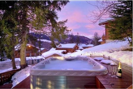 ski chalet 224 vendre la tania savoie alpes moulin