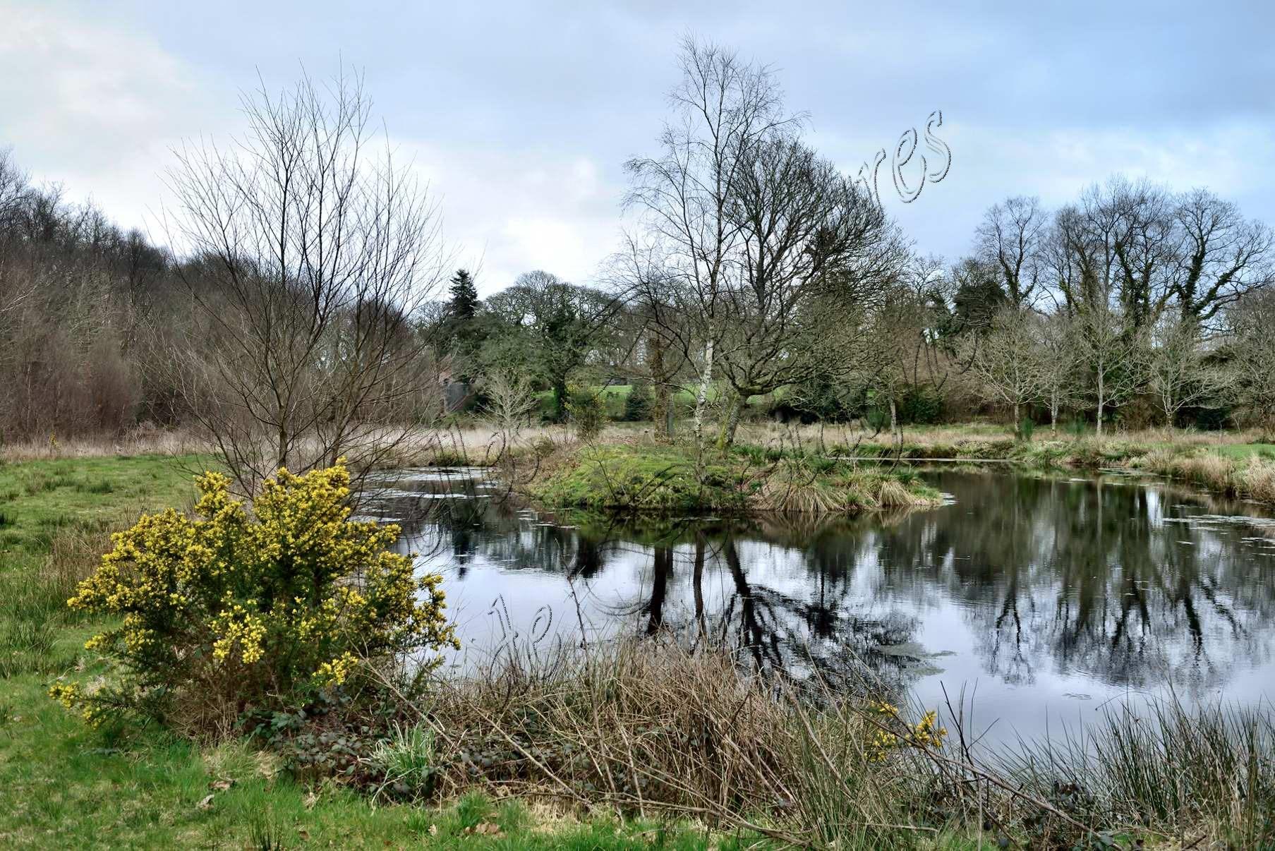 Te koop molen en boerderij op 6 ha met vijver en rivier for Grote voorgevormde vijver te koop