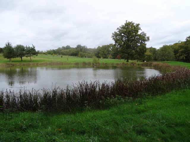 Huis met vijvers op 5 ha te koop dordogne frankrijk moulin for Luchtpomp vijver te koop