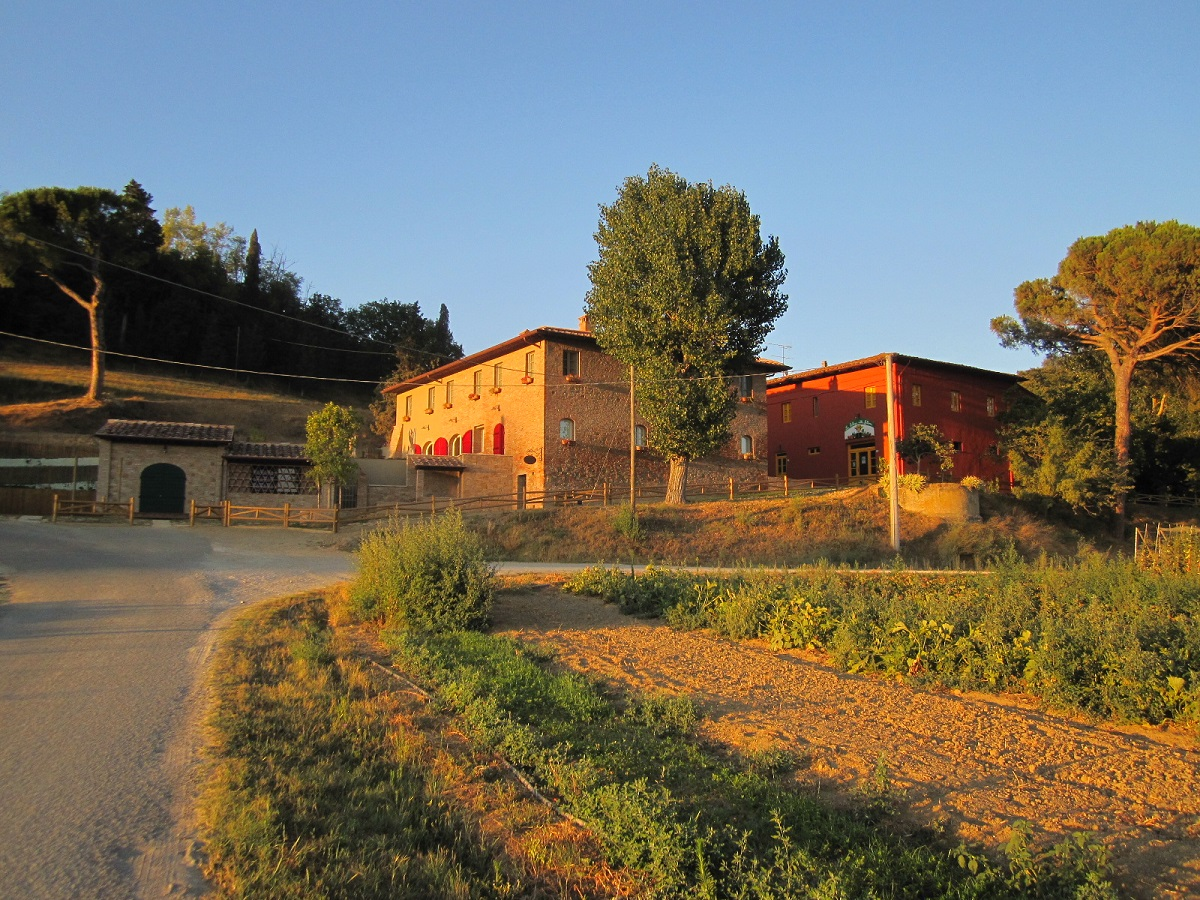 Organic farm for sale with B&B and stunning owner's house  Pisa, Tuscany